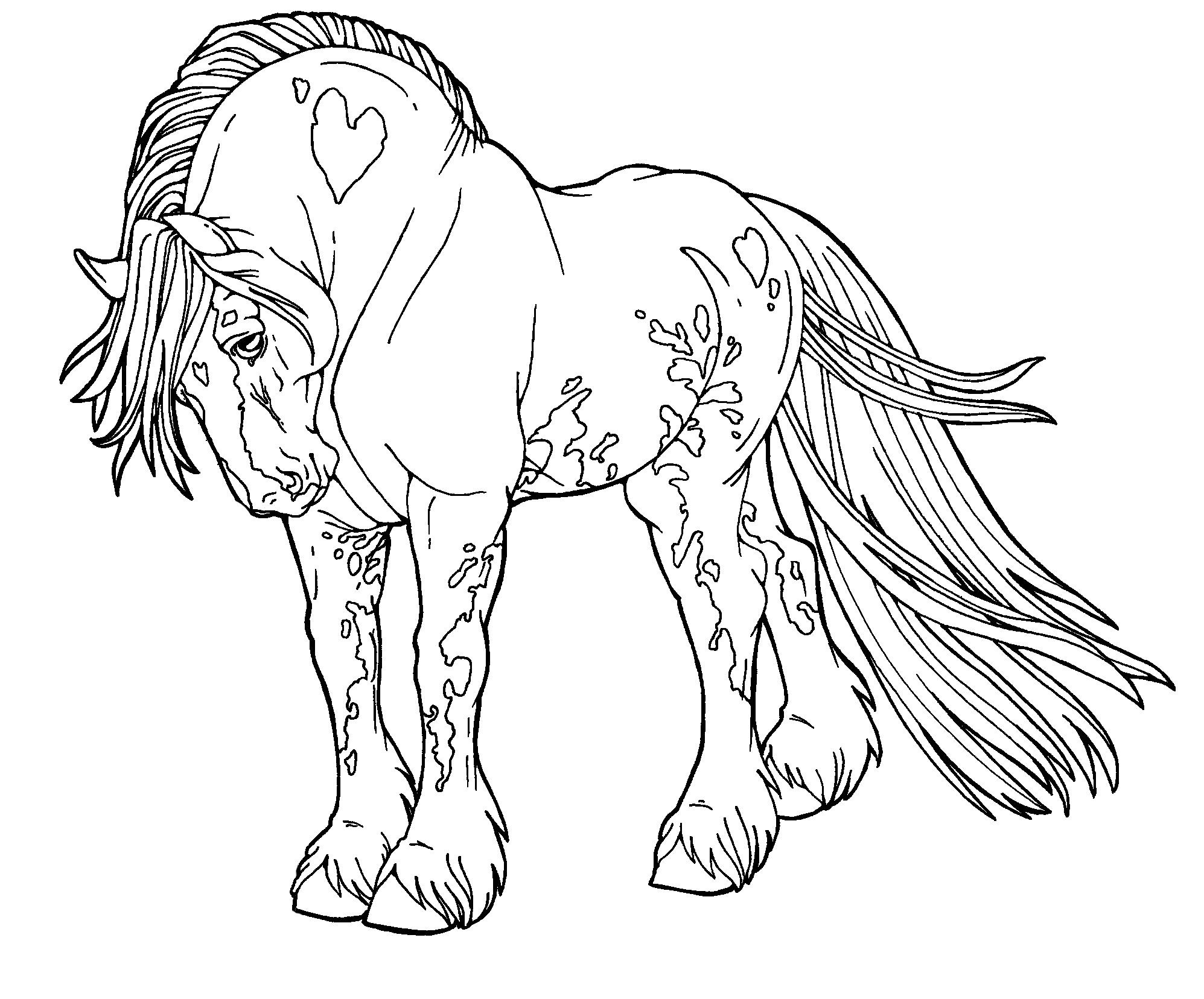 1995x1656 Coloring Pages Horses Free Copy Gypsy Drawings