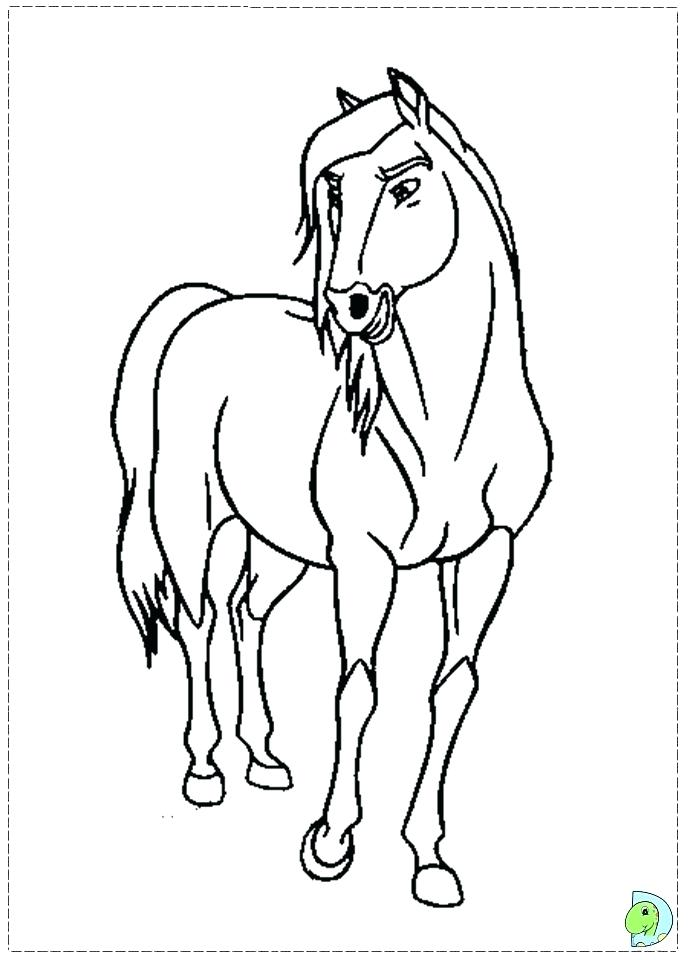 691x960 Great Horse Coloring Page Print Appaloosa Pages Animal Of Cartoon