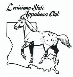 236x250 Louisiana Appaloosa Horse Club