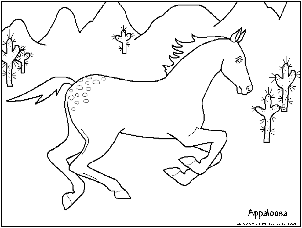 989x748 Printable Horse Drawings Appaloosa Spirit To Color