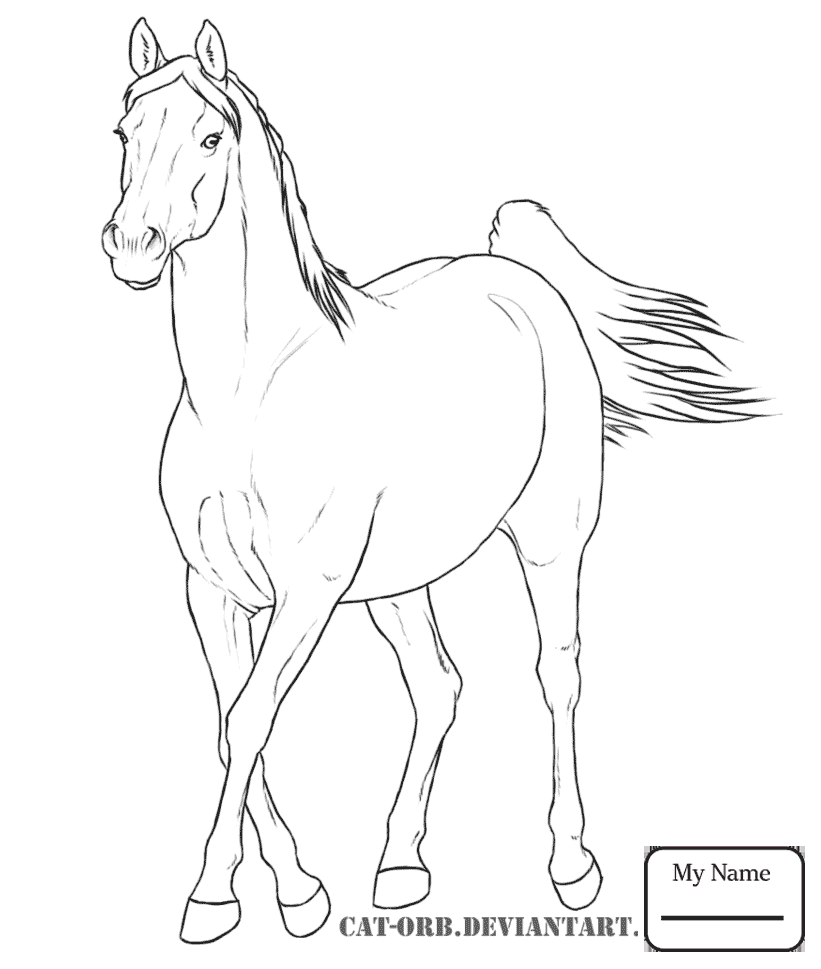 821x969 Horses