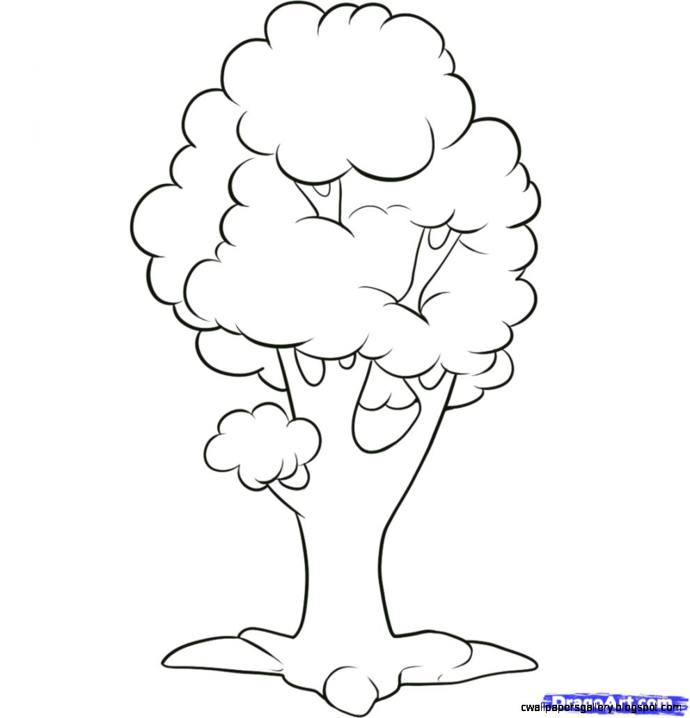 991x1031 Simple Drawing Of A Tree Coloring Pages Simple Tree Drawing Ideas