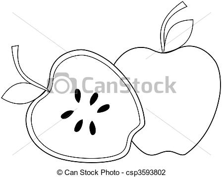 450x358 Apples. Whole Apple And A Half An Apple Clip Art