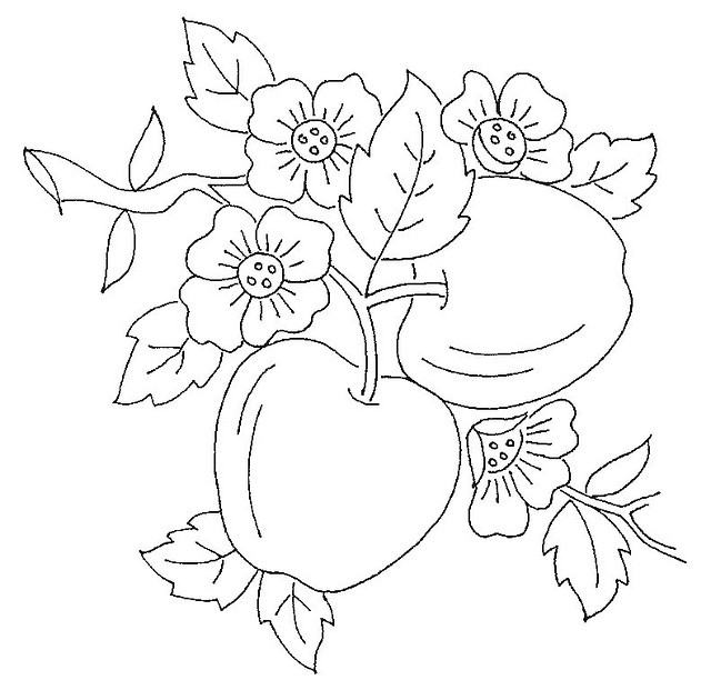 640x621 Apple Blossom Coloring Pages
