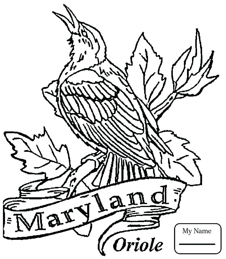 765x877 Arkansas Coloring Pages Coloring Pages For Kids Birds Mockingbird