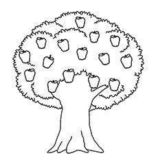 230x230 Coloring Pages Coloring Pages Draw A Tree Apple Coloring Pages