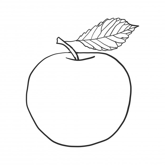 626x626 Doodle Apple Vector Vector Free Download