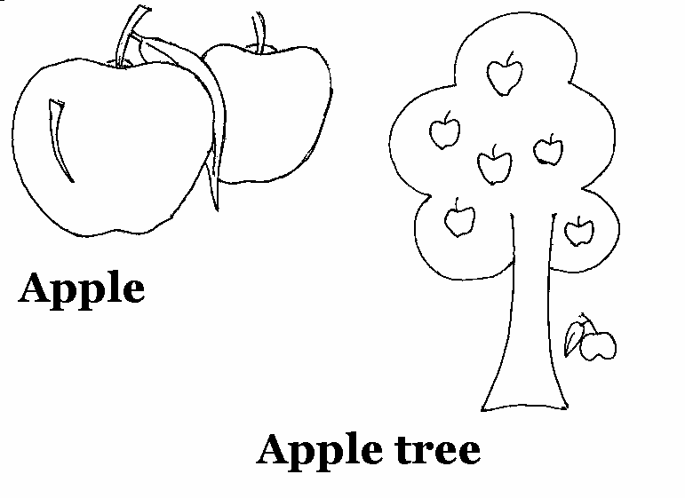 Apple Drawing For Kids At Getdrawings Free For Personal Use