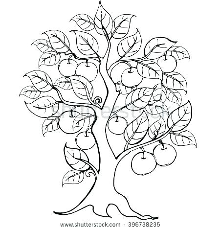 450x470 Fresh Apple Tree Coloring Page And Apple Tree Coloring Page Hands