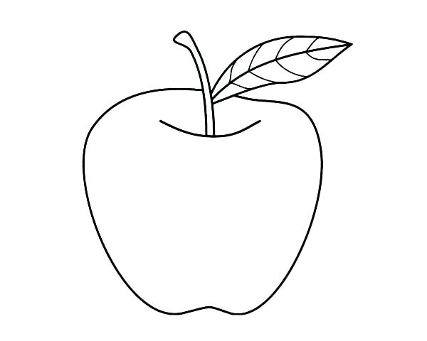 Line Drawing Apple : Apple fruit drawing at getdrawings free for personal