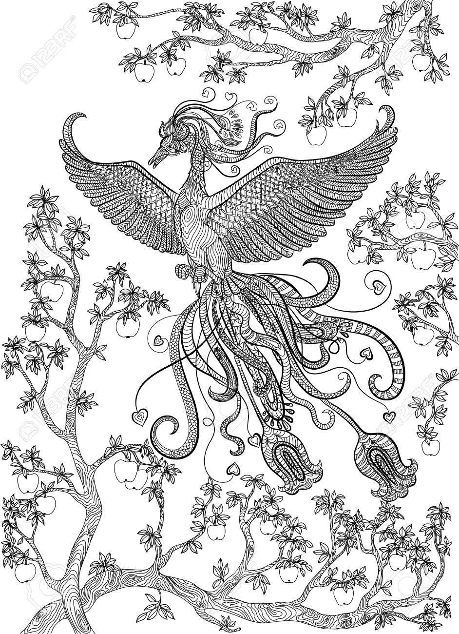 942x1300 Hand Drawn Bird