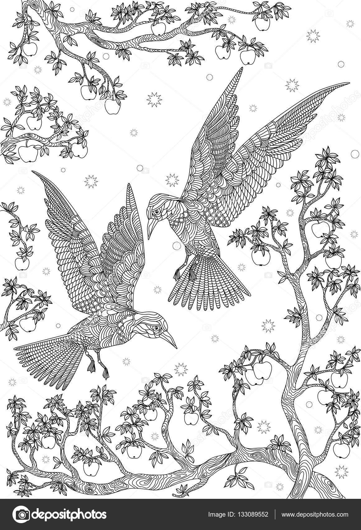 1160x1700 Hand Drawn Bird