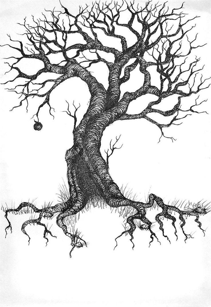 736x1069 Tree Drawing Tattoo
