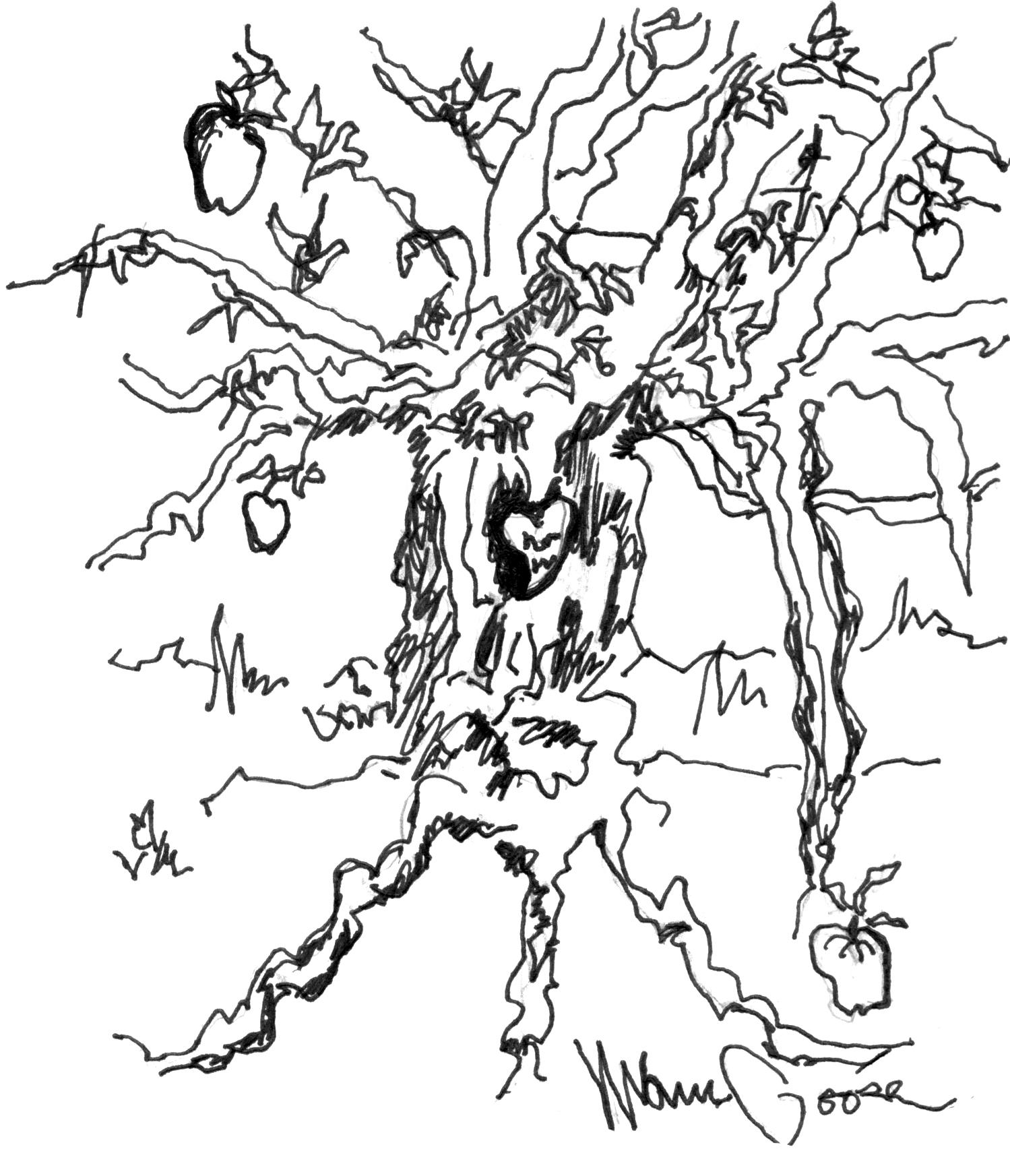 1499x1745 Apple Tree Branch Drawing