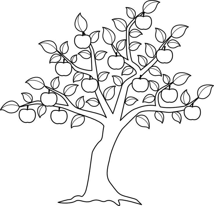 736x708 Apple Tree Color Me Pinterest Motifs Apples: Apple Tree Coloring Sheets To Print At Alzheimers-prions.com