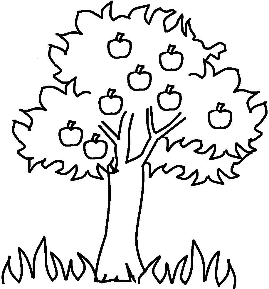 916x986 Apple Clipart Family Tree