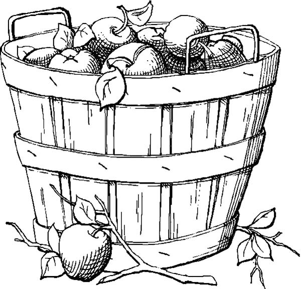 600x576 Apple Basket Coloring Page Fall Leaves Coloring Pages