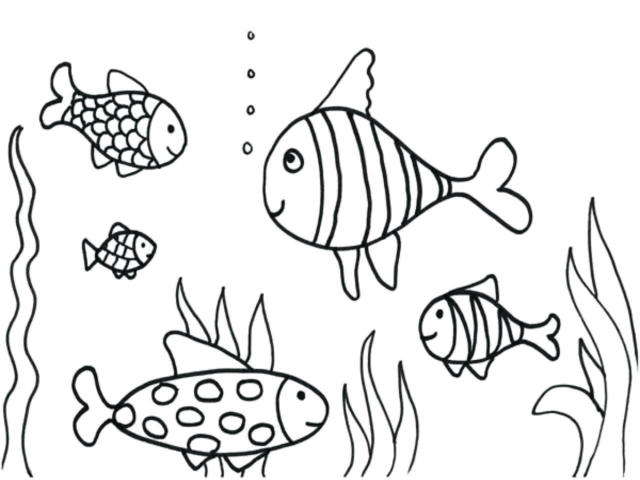 1280x960 Empty Fish Tank Coloring Page 5 Enchanting Pretty Background