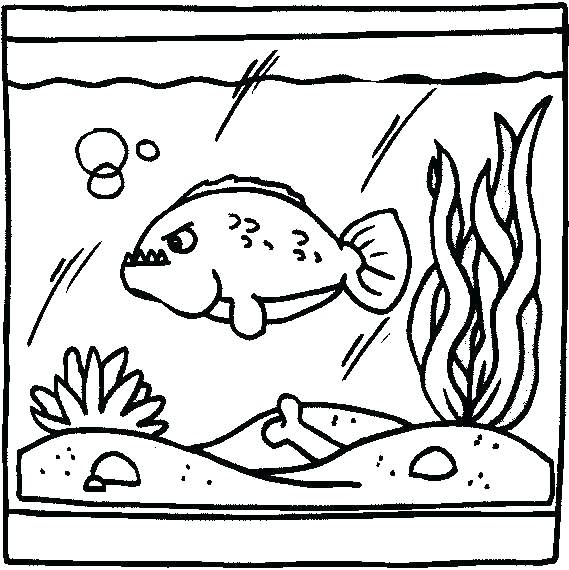 569x570 Fish Tank Coloring Page Aquarium Coloring Pages Coloring Pages