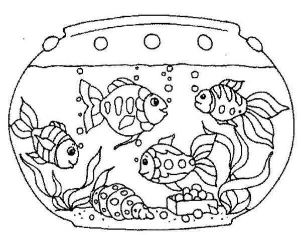 600x470 Fish Tank Images For Drawing Allofpicts