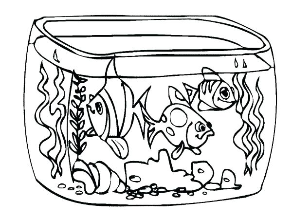 600x450 Fresh Fish Tank Coloring Page Free Download Aquarium How To Draw