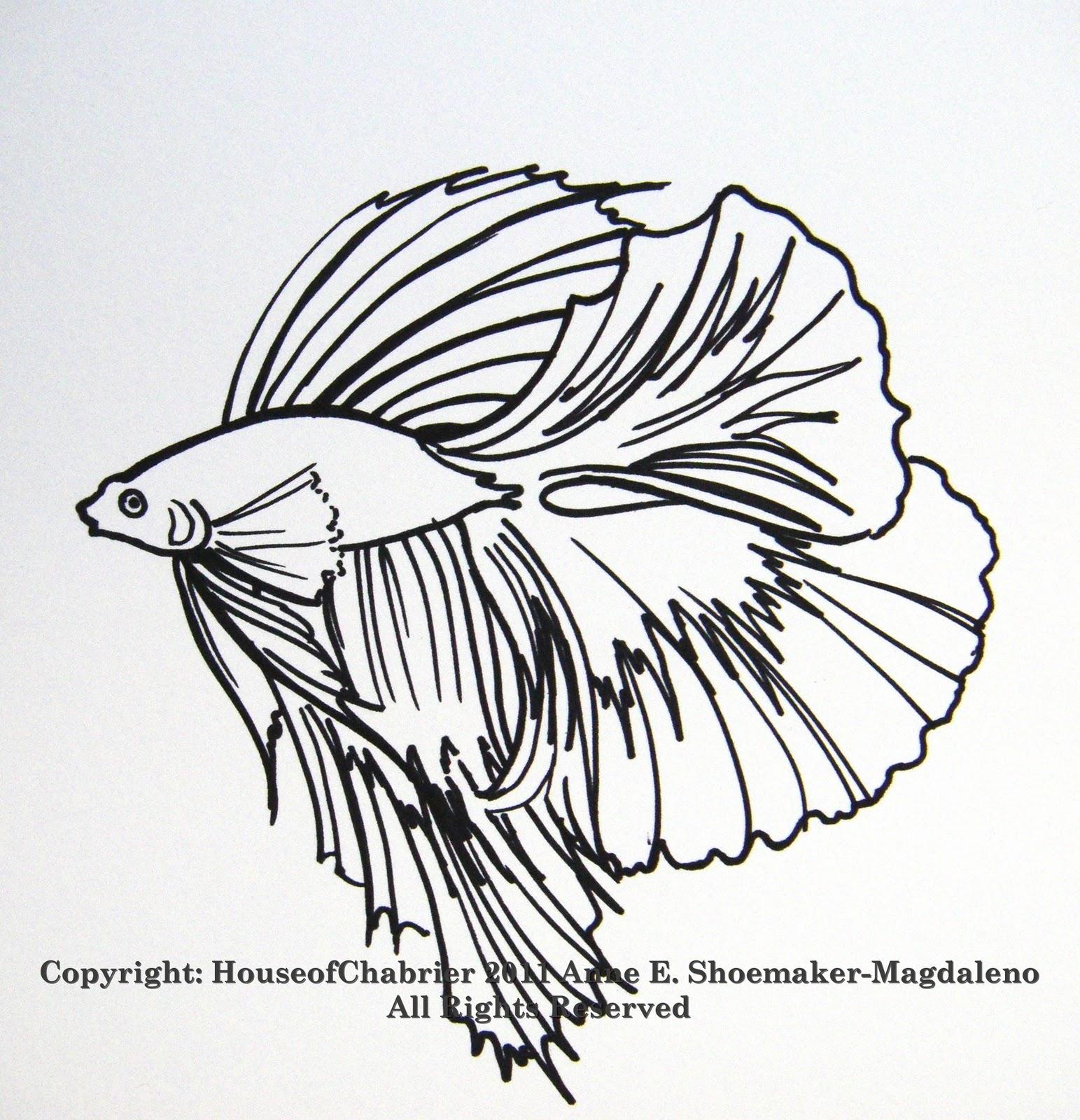 1543x1600 Pin Aquarium Fish Line Drawing Stock Vector Spline X 3779991