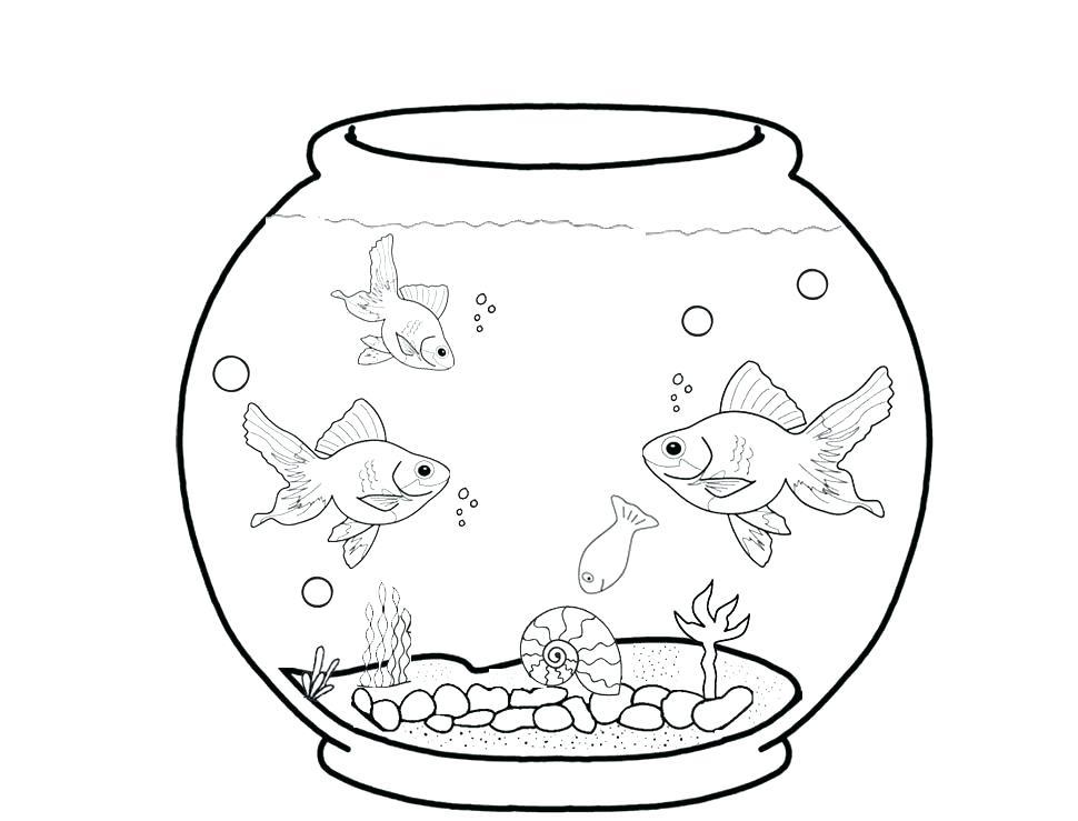 970x739 Aquarium Coloring Page Marine
