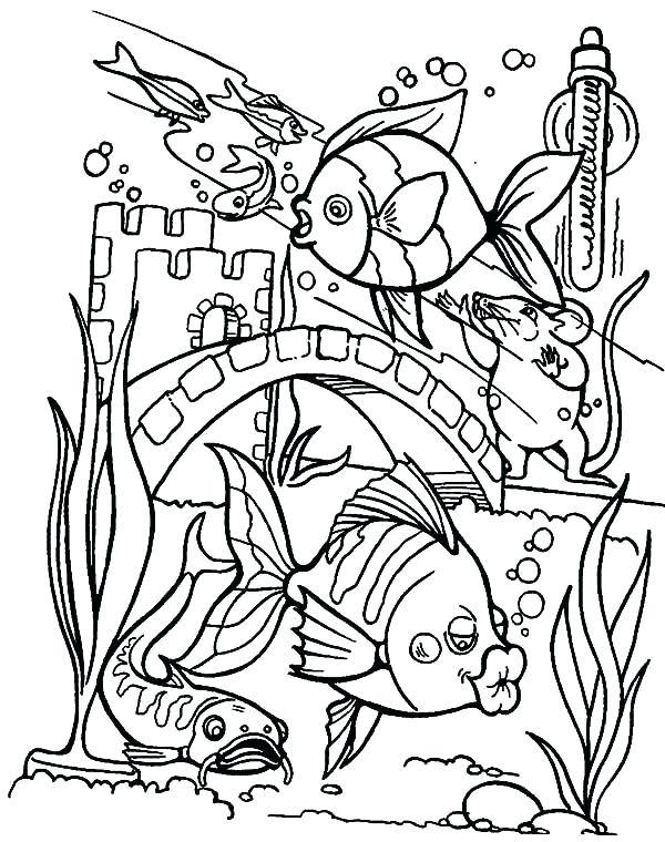Outstanding Monterey Bay Aquarium Coloring Pages Embellishment ...