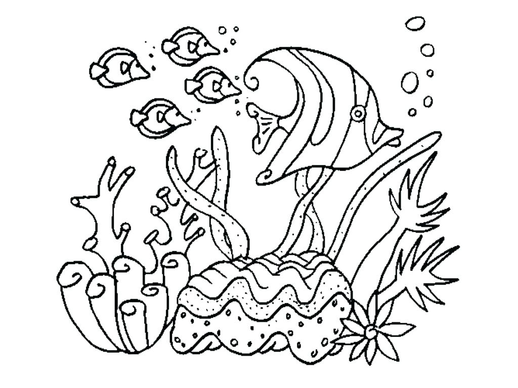 1024x768 Empty Fish Tank Coloring Page 5 Enchanting Pretty Background