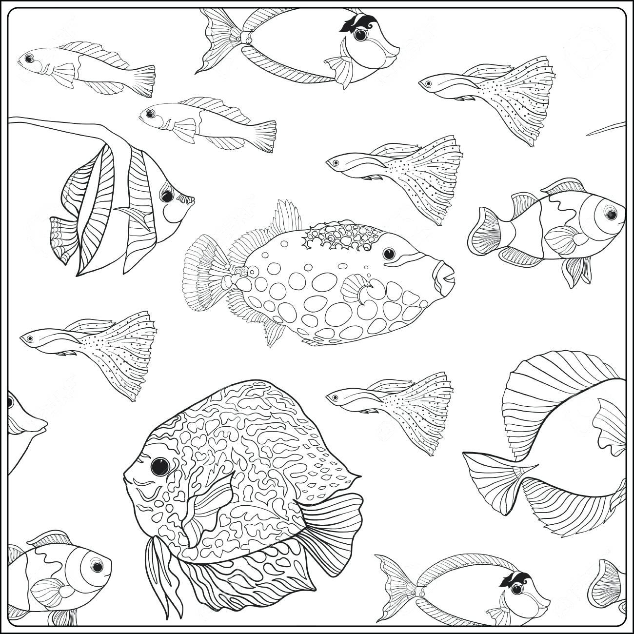 1300x1300 Coloring Aquarium Coloring Page Kids Book Free Printable Ocean