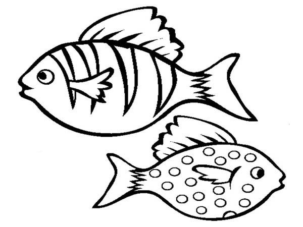 coloring pages cartoon fish - photo#33