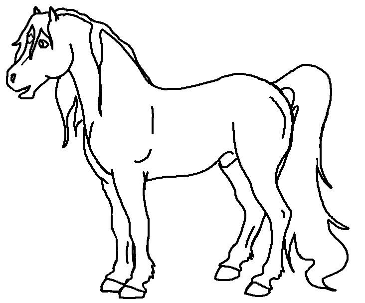 732x607 Arabian Horse By Harlequin Wondercat