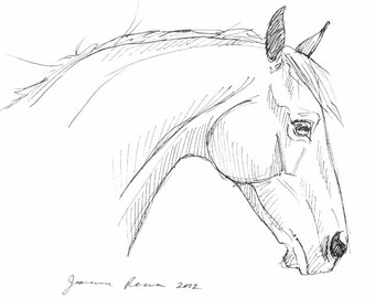 340x270 Horse Art Original Arabian Horse Pen Amp Ink Sketch
