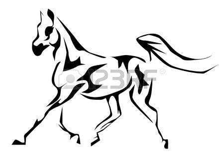 Arabian Horse Head Drawing