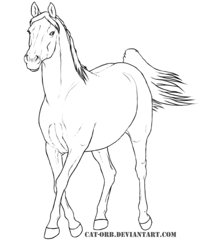 407x480 Arabian Mare Coloring Page Free Printable Coloring Pages