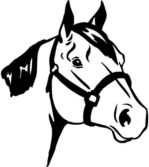 503x564 Free Horse Head Clipart Image