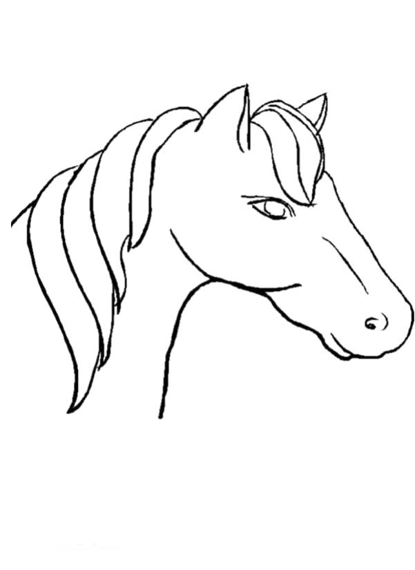 601x825 Horse Head Coloring Page