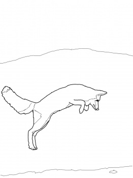 262x350 Arctic Fox Jumping Colouring Foxes Arctic Fox