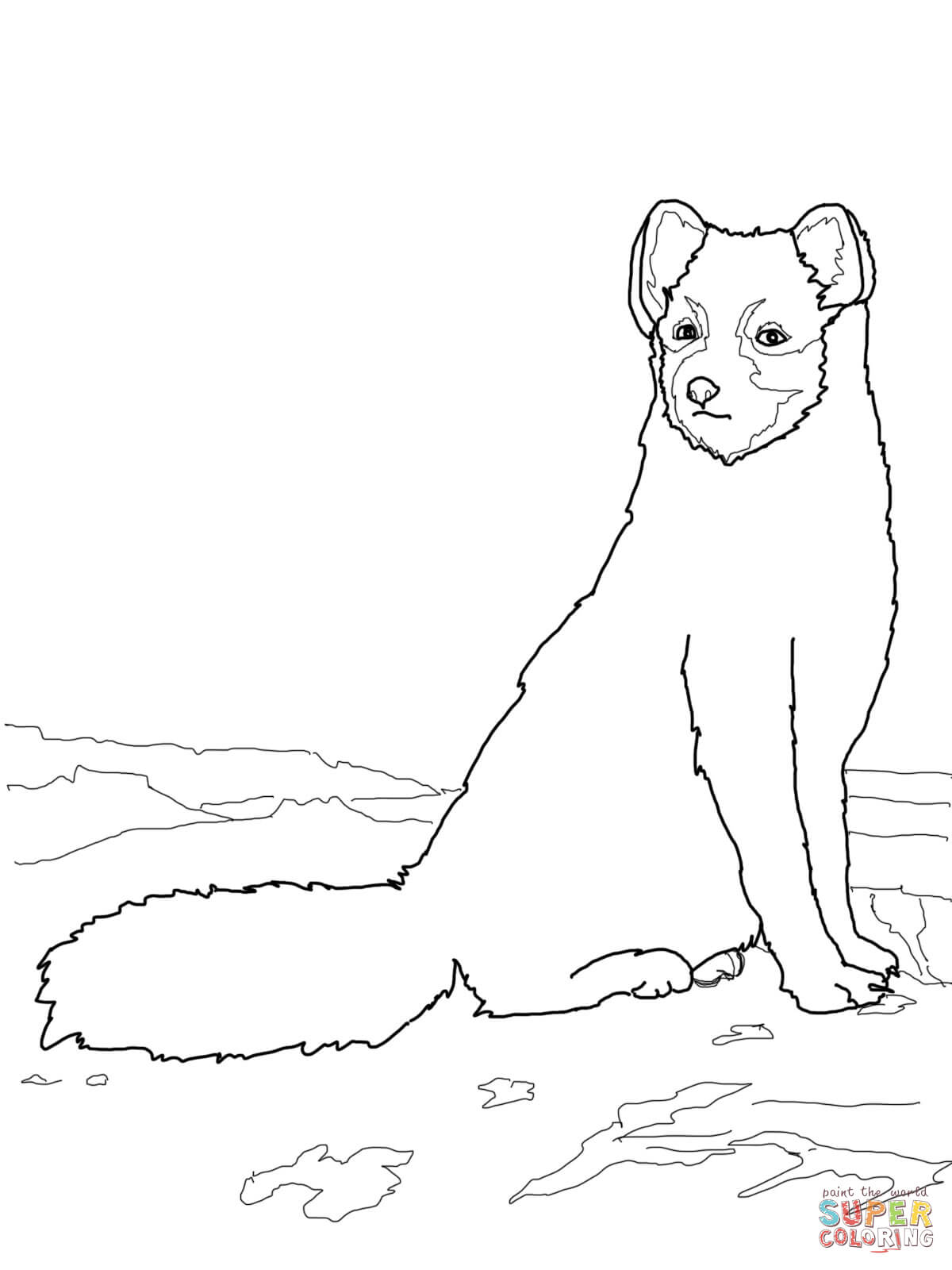 1200x1600 Sitting Arctic Fox Coloring Page Free Printable Coloring Pages