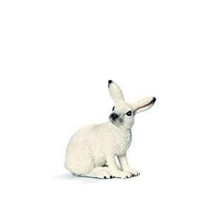 Arctic Hare Drawing