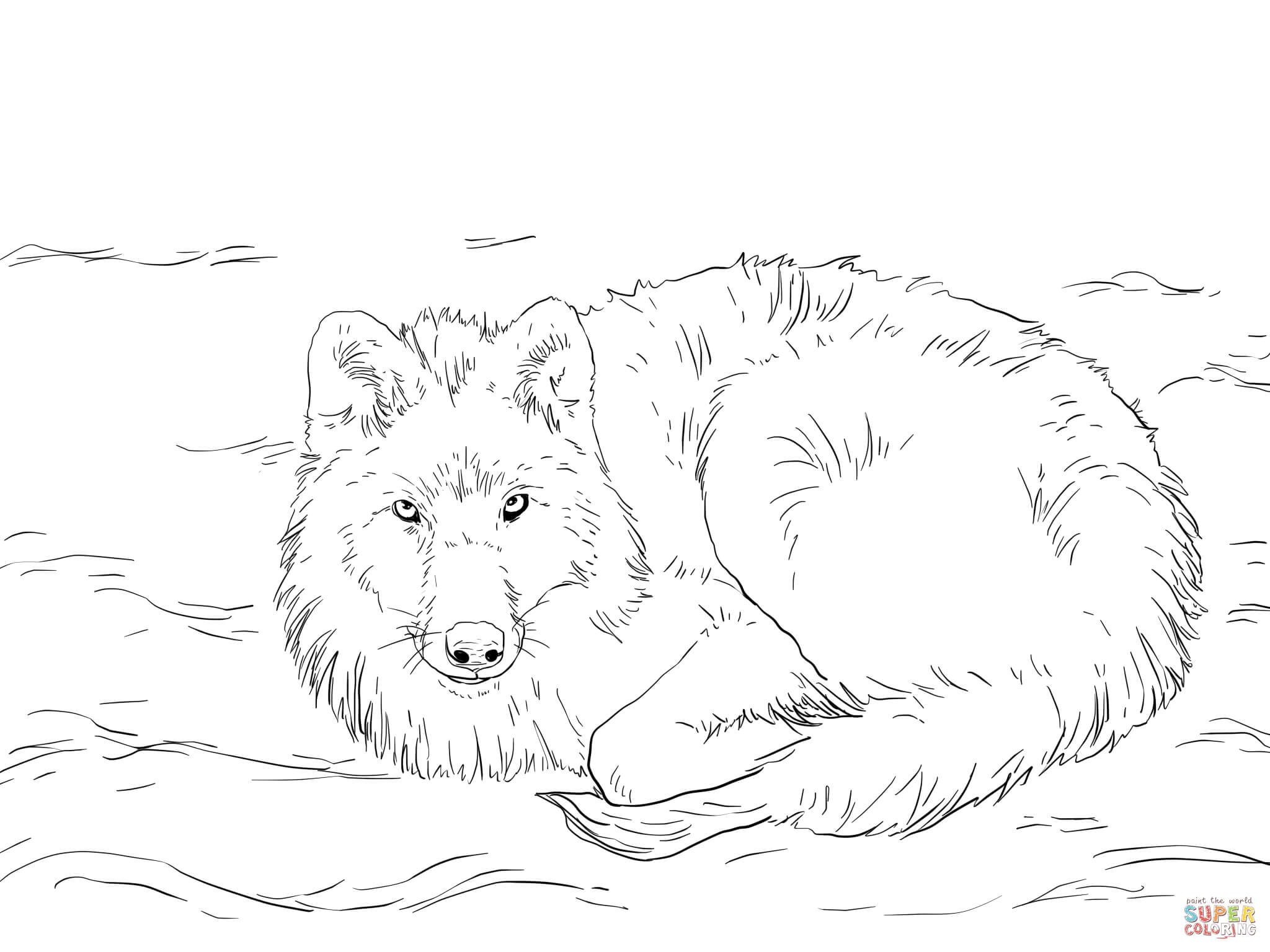 2048x1536 Arctic Wolf Coloring Pages