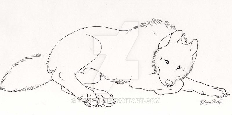 800x398 Artic Wolf By Lyanti