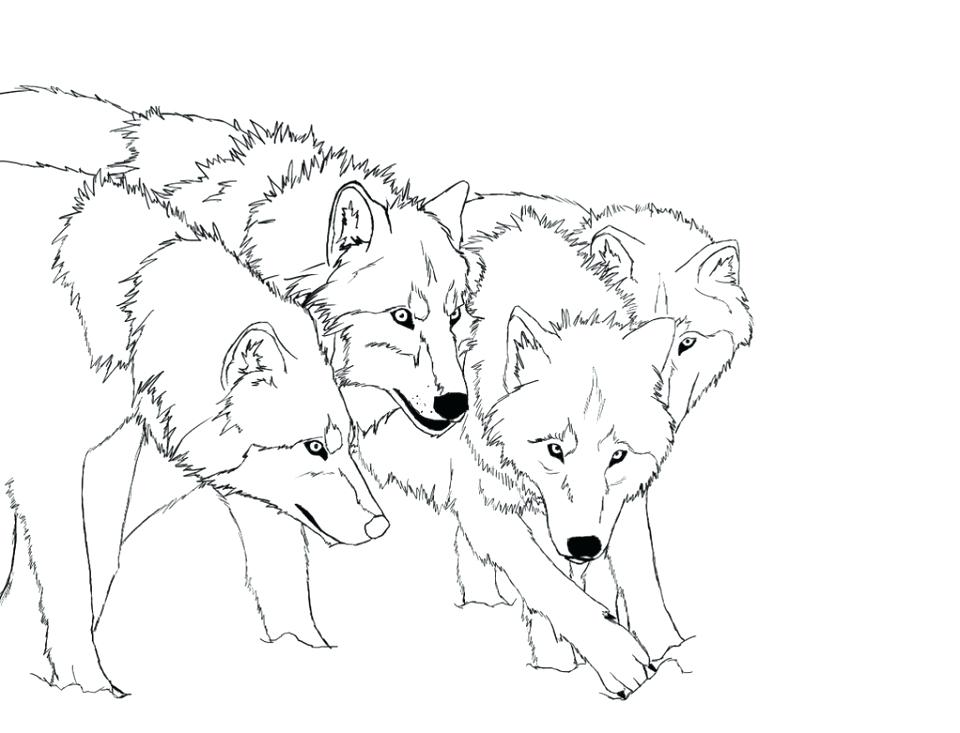 960x733 Wolf Coloring Pages Free Anime Wolf Coloring Pages Wolf Pack