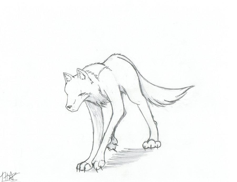 900x691 Arctic Wolf By Lunarwarrior21