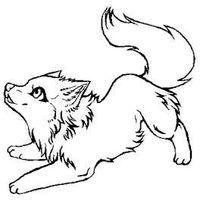 200x200 Animal Jam Artiv Wolf Drawings Animal Jam Arctic Wolf Drawing