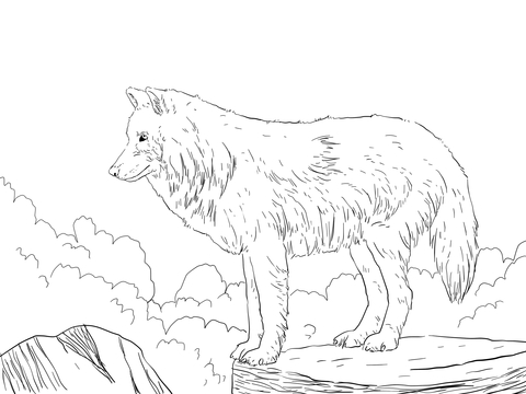 480x360 Arctic Snow Wolf Coloring Page Free Printable Coloring Pages