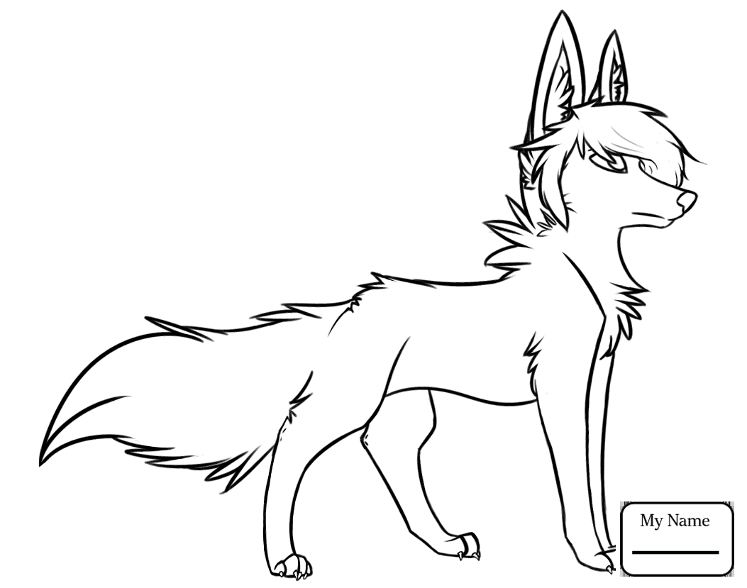 Arctic Wolf Drawing_ at GetDrawings.com | Free for personal use ...