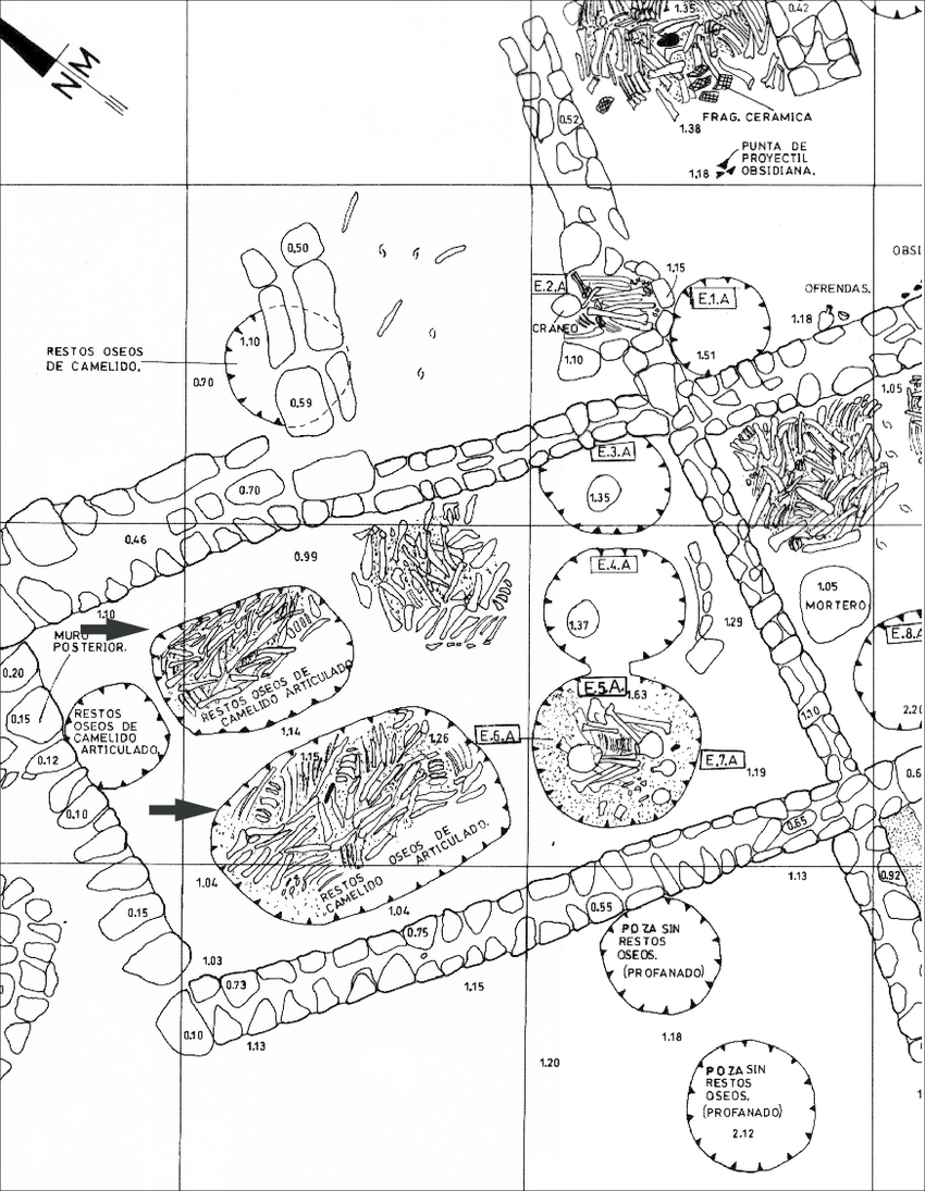 850x1095 Wari Cemetery Area