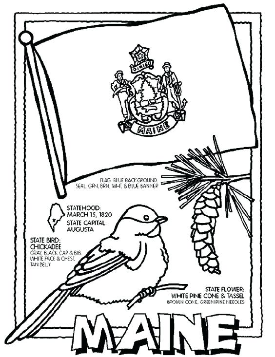 564x733 Argentina Coloring Pages Flag Of Coloring Page Coloring Page Sport