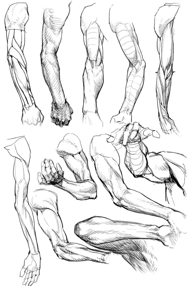Arm And Hand Drawing at GetDrawings.com | Free for personal use Arm ...